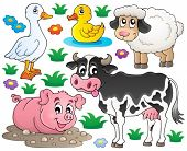 Farm animals set 1 - eps10 vector illustration.