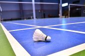 pic of shuttlecock  - badminton court with a shuttlecock at the corner - JPG
