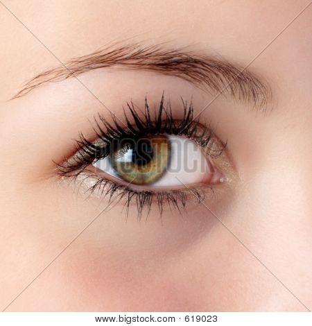 Hazel Auge