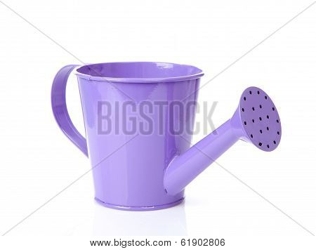 Purple Watering Can