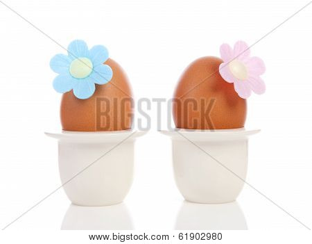 Two Chicken Eggs In Holder With Flower Over White Background