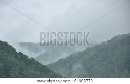 Fog Above The Woody Mountains