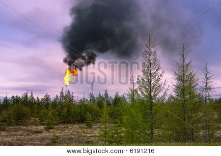 Black Smoke  In West Siberia.
