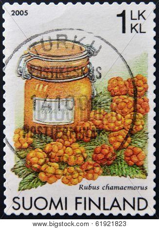 FINLAND - CIRCA 2005: A stamp printed in Finland shows cloudberry Rubus chamaemorus circa 2005