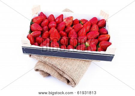 Wholesale Strawberries