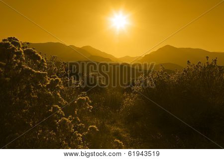 Silhouette Of Mountain Range Layered In Yellow