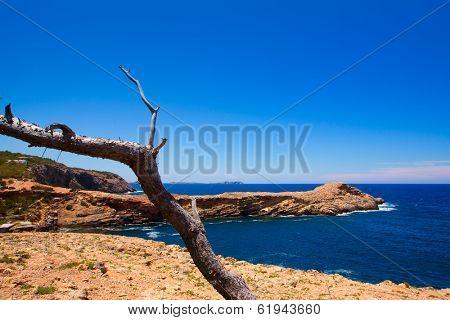 Ibiza Punta de Sa Galera beach in San Antonio at Balearic Islands Spain