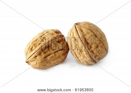 Walnuts On The Withe Background