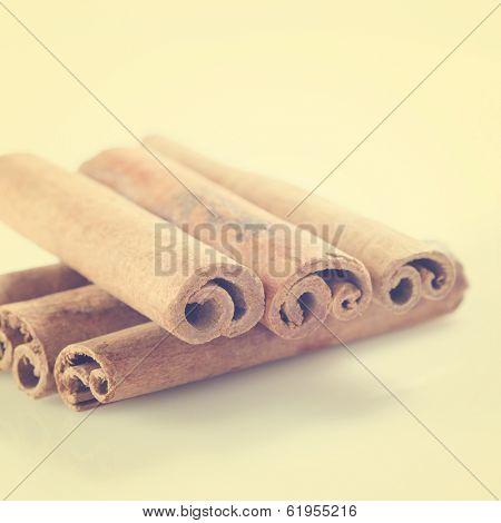 Cinnamon sticks in vintage retro background.
