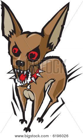 Chihuahua loco