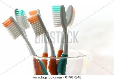 Six Toothbrush