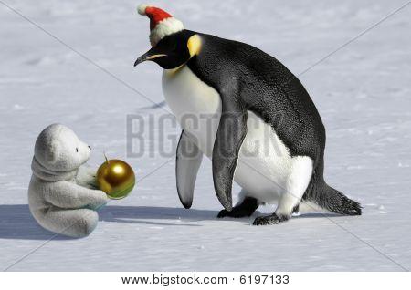 Rare Christmas Meeting