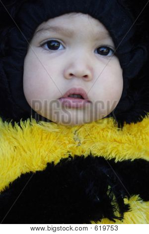 Close-up Of Girl Dressed Like A Bee