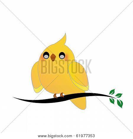 Cute cockatiel on a twig
