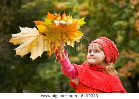 Little Girl Keeps Leafes In Hand In Park In The Autumn