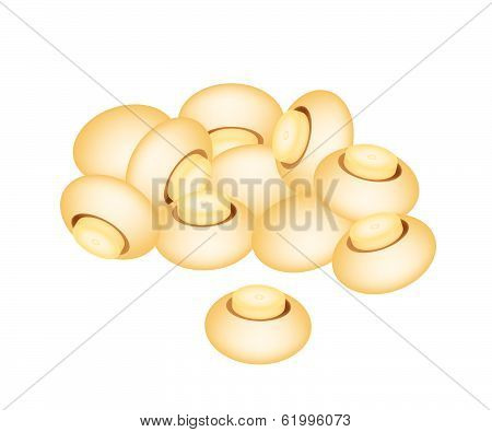 A Stake Of Champignon Mushrooms On White Background
