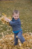 Boy Throwing Leaves