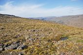 pic of taimyr  - Rocky landscape on the Putorana plateau - JPG