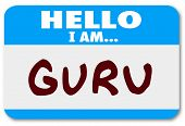 picture of tutor  - Guru Name Tag Expert Teacher Guide Mentor Master - JPG