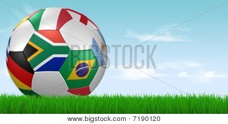 2010 Soccer Ball In Grass