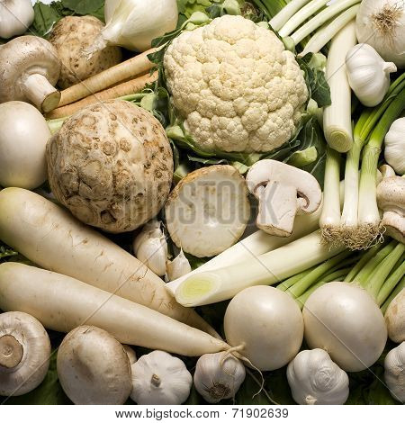 Vegetables in white background
