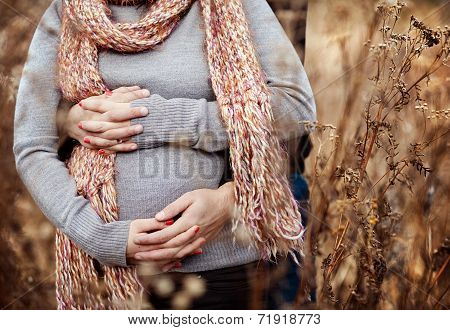Close up of pregnant couple in autumn
