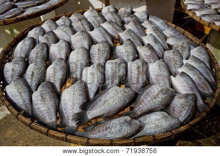 Many Dry Gourami Fishs On Bamboo Plates