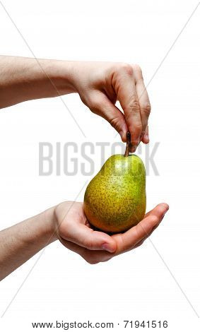 Male Hand Holding Pear