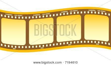 Roll Of Film