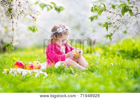Cute Toddler Girl Eating Apple In A Blooming Garden