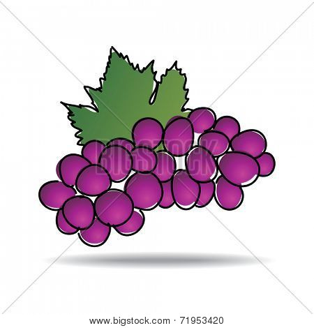 Freehand drawing grape icon - vector eps 10 illustration