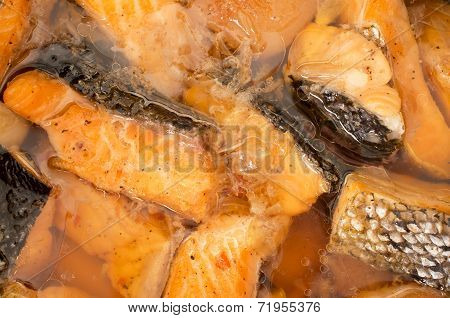 Vietnamese Caramelized And Simmered Salmon Studio Closeup Shot