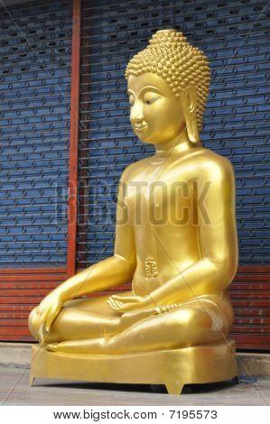Buddha New Brass Body Squat