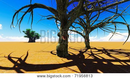 African village With the baobabs