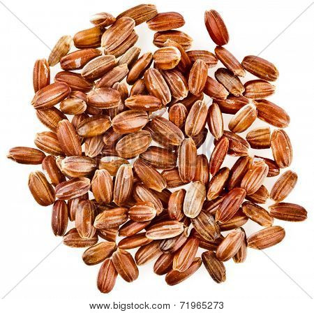 Red Unpolished Rice  top view surface close up isolated on white background