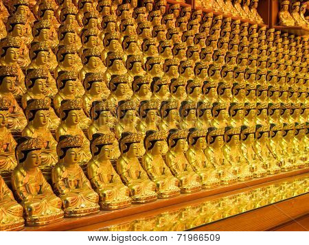 Buddha images in a row