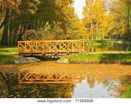 Autumn, Bridge In Park