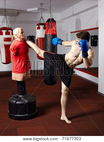 Kickbox Fighter Working With The Dummy