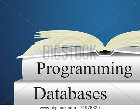 Databases Programming Indicates Software Design And Application