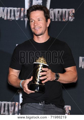 LOS ANGELES - APR 13:  Mark Wahlberg in the 2014 MTV Movie Awards - Press Room  on April 13, 2014 in Los Angeles, CA.
