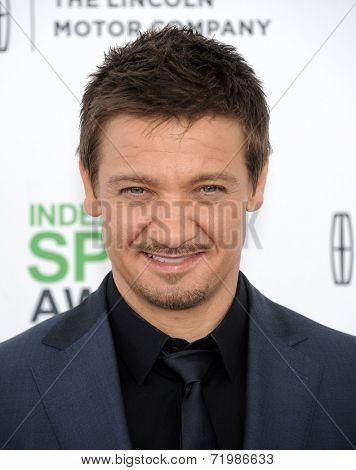 LOS ANGELES - MAR 01:  Jeremy Renner arrives to the Film Independent Spirit Awards 2014  on March 01, 2014 in Santa Monica, CA.