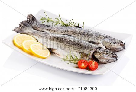Fresh raw trout on white background