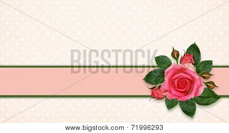 Rose Flowers And Frame
