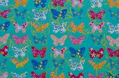 pic of shiting  - a turquoise backdrop with colorful butterflies on top - JPG
