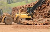 stock photo of track-hoe  - A large wheeled front end log loader and track hoe working the log yard at a lumber processing mill that specializes in small logs - JPG