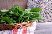 foto of sorrel  - Fresh sorrel in round wicker basket on napkin on wooden background - JPG