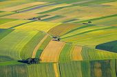 stock photo of plowed field  - Aerial view of agricultural fields - JPG