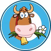stock photo of moo-cow  - Cartoon Mascot Character Circle Label With Cow - JPG