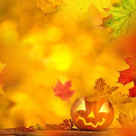 pic of jack o lanterns  - Scary jack o lantern halloween background - JPG