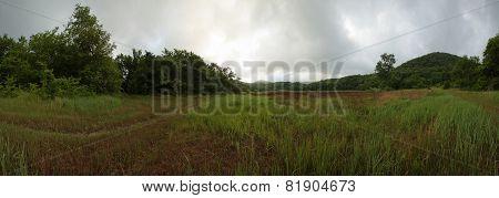 Abrau Peninsula, reserve Utrish